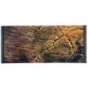 Fonas-sienelė akvariumui Thin Pupe 80x40