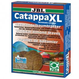 Catappa