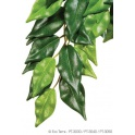 Exo Terra Silk Plant Smal ficus (mažas)
