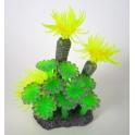 Spalvotas koralas
