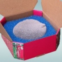 JBL CarboMec ultra, aktyvuota anglis su krepšeliu skirta CrystalProfi e1500/e1501