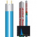 Actinic Power 24w