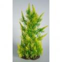 Deluxw Pflanze, medium Nr. 18