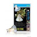 Sun Glo Halogen Neodymium Lamp 35W