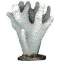 Dirbtinis koralas Beauty 1 14cm