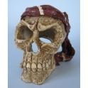 Dekoracija kaukolė (Vidutinė)
