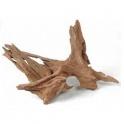 Šaknys Mangrovia Wood 70-100cm