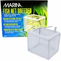 Marina žuvų veisyla