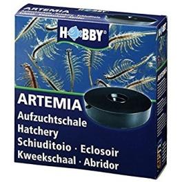 Artemia Hatchery