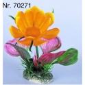 Blüten-Pflanzen, Nr. 70271