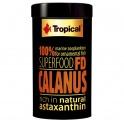 Calanus natūralus zooplanktonas žuvims 100 ml