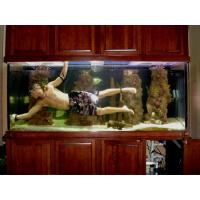 Akvariumo valymas